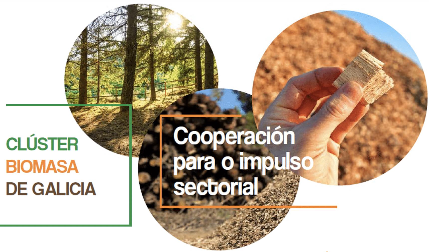 Cluster biomasa Galicia